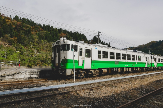 P1170853