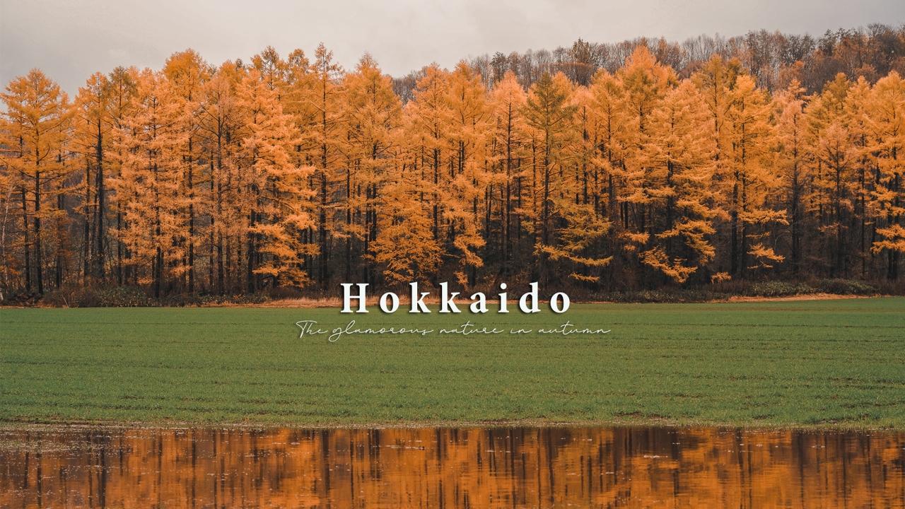 Hokkaido : เที่ยวฮอกไกโด ในฤดูใบไม้เปลี่ยนสี สัมผัสมนต์สเน่ห์ของธรรมชาติเต็มพิกัด